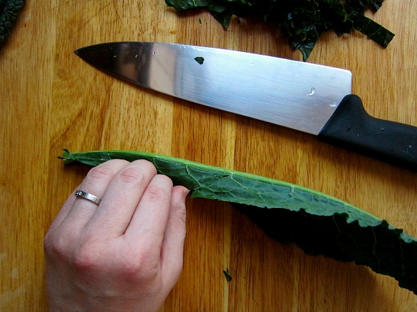 "Fold the leaf in half to expose the rib.  Since I didn't have my knife right there while cutting I had my thumb exposed.  This is a ""no No"" when cutting.  Tuck that thumb behind your fingers."