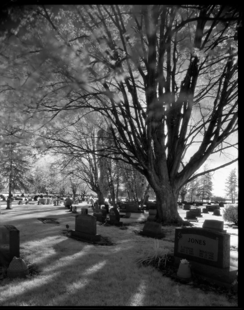 Maple Grove Cemetery 1