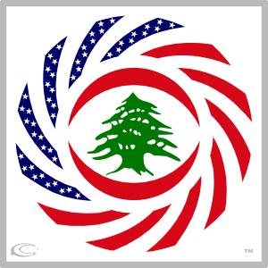 FLAGS - L — Carbon-Fibre Media