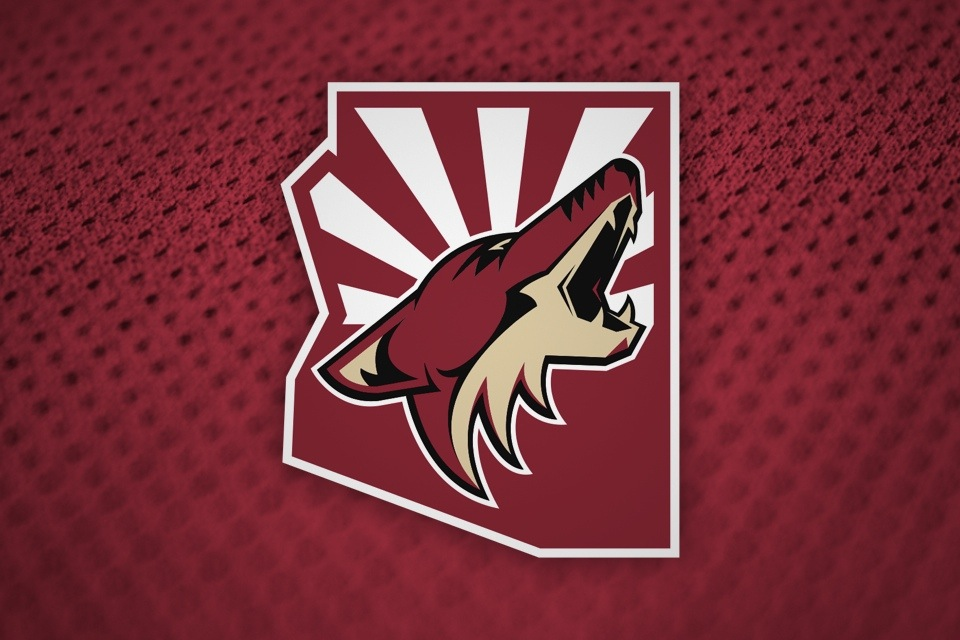 Seen on cover of Coyotes' 2013-14 media guide