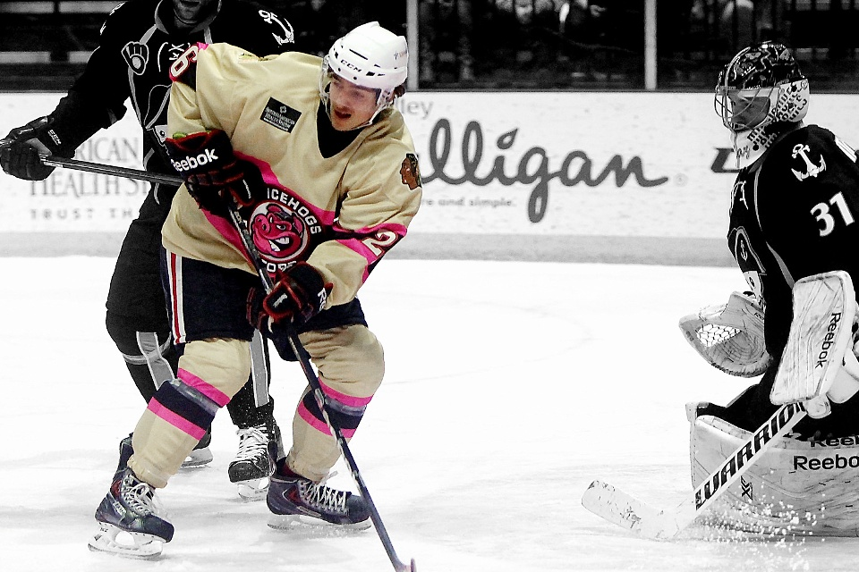 Photo from Rockford IceHogs via Flickr