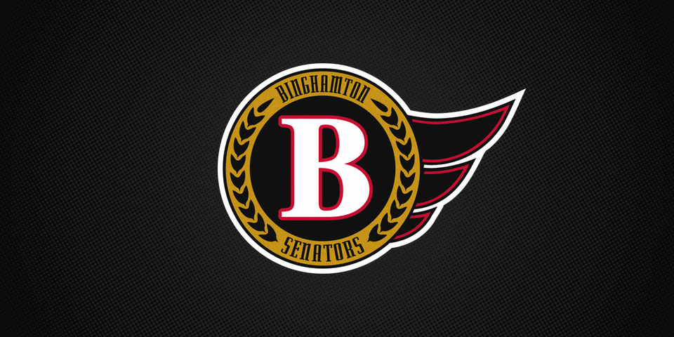 Binghamton Senators shoulder patch, 2002—