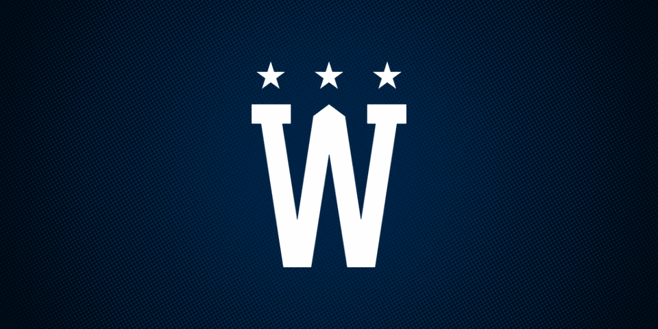 Washington Capitals 2015 Winter Classic secondary logo