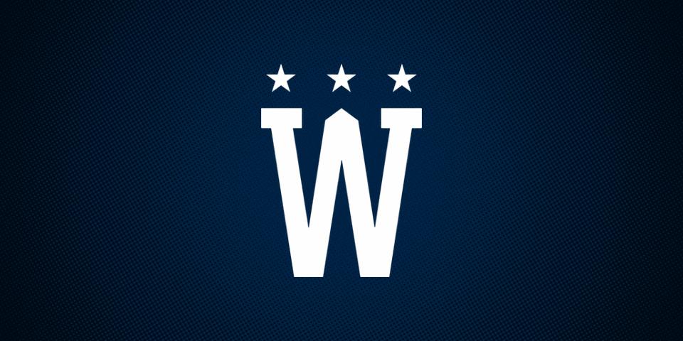 Washington Capitals 2015 Winter Classic secondary logo