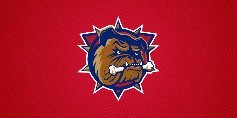 Hamilton Bulldogs (AHL), 1996—2015