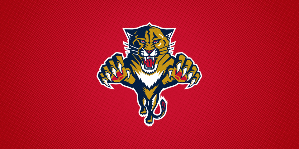 Florida Panthers, 1993—2016