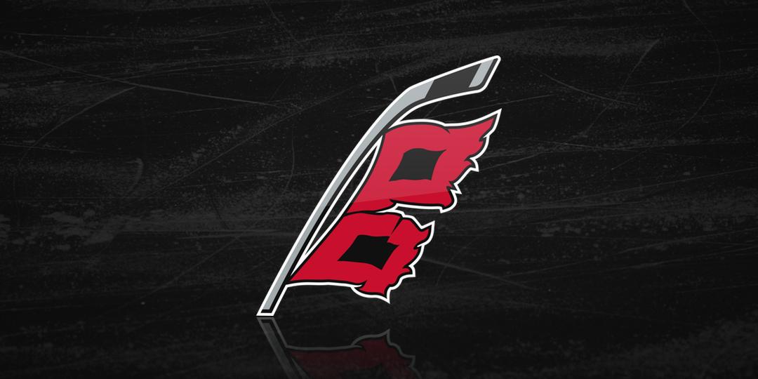 Carolina Hurricanes Primary Team Logo Patch