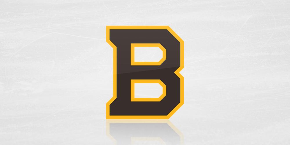 Boston Bruins logo / 2019 NHL Winter Classic