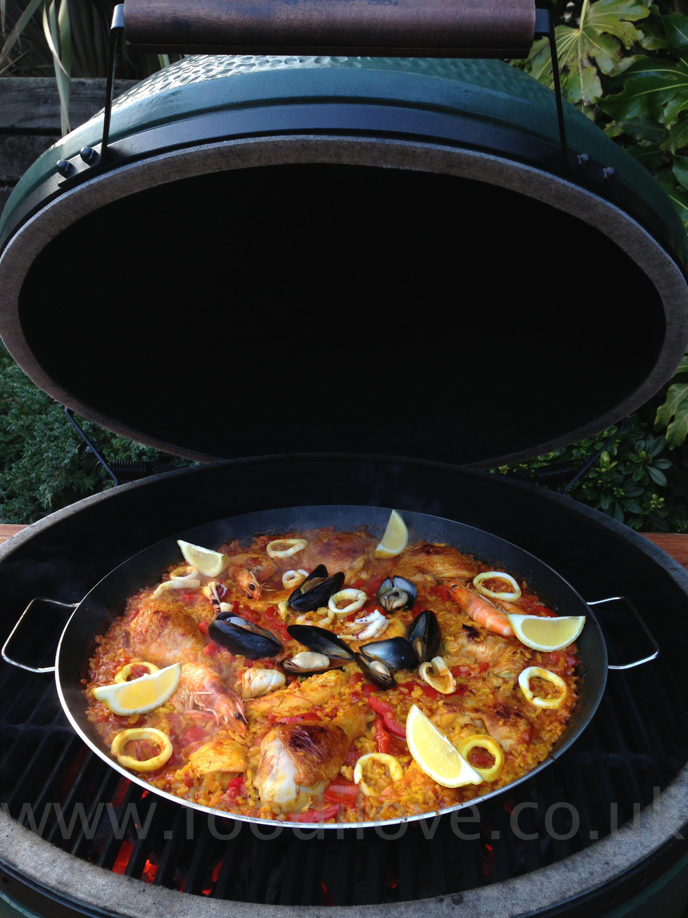 Paella on the Braai/BigGreenEgg