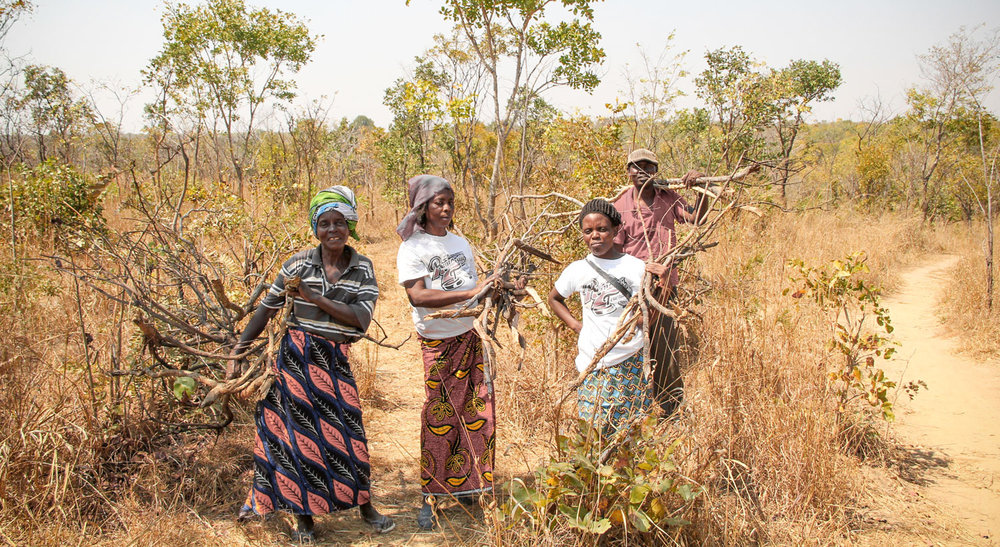 On a regular basis women from the community have to collect firewood in order to cook food for their families.