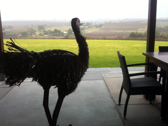 view from OLeary Walker Wines