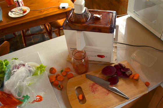 juicer and vegetable artifacts