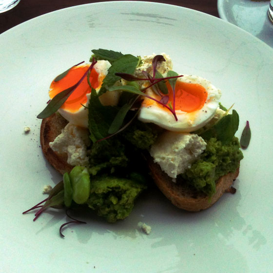 broadbean and mint mash with soft boiled egg, ora, kew, melbourne