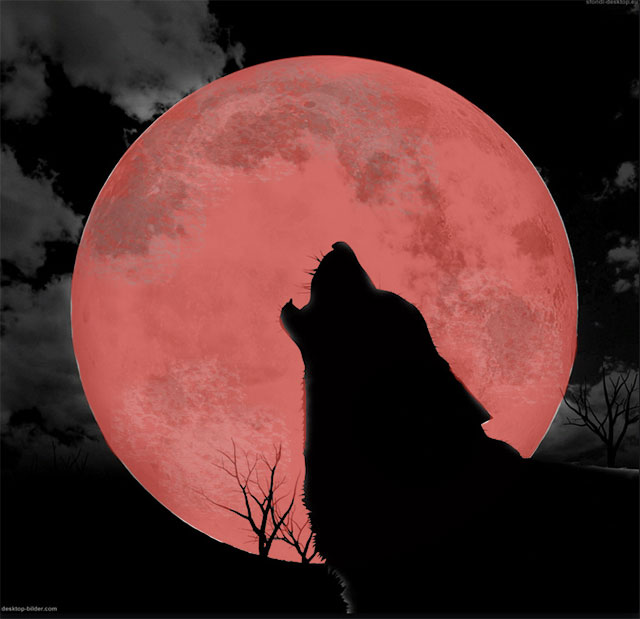 Howling Wolf Red Moon Blood Arising The Jamjar