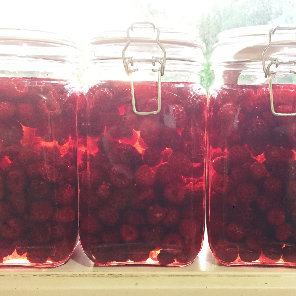 Fresh raspberries macerating in white wine vinegar for three weeks in a cool dark place (not the window sill as this photo'd have you believe :)