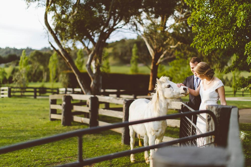 Verena and Stefan wedding, Bendooley Estate, Berrima by Milton Gan Photography 097.jpg
