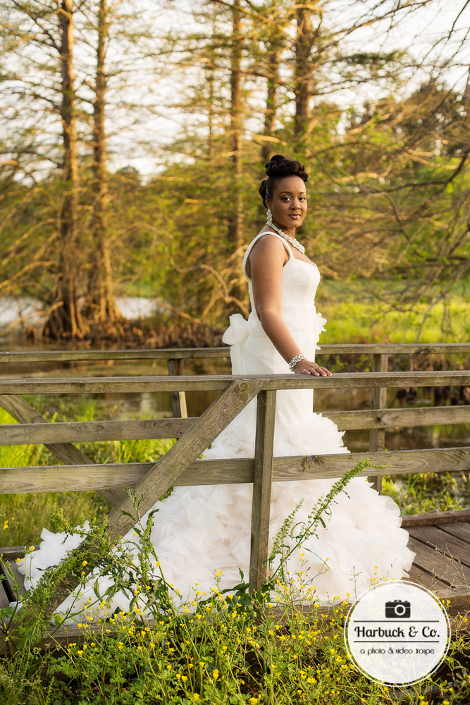 Harbuck & Co. - Bridal Photography