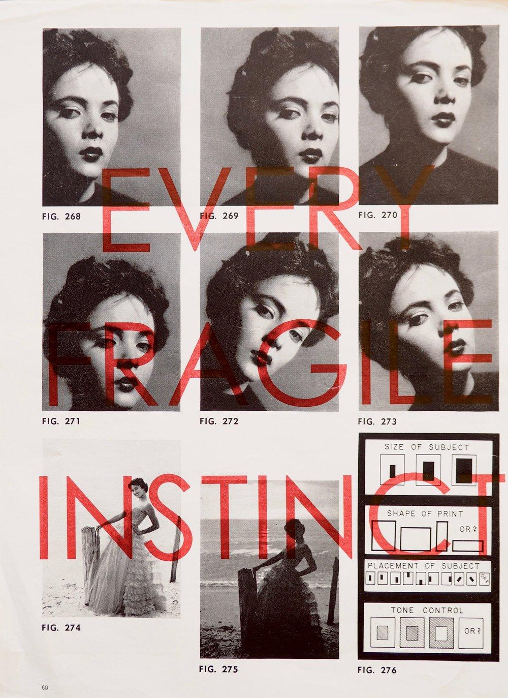 Every Fragile Instinct