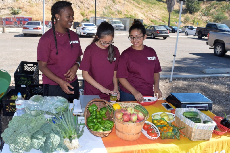 Youth working at Second Chance Farm Stand