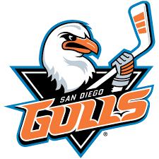 Gulls logo.png