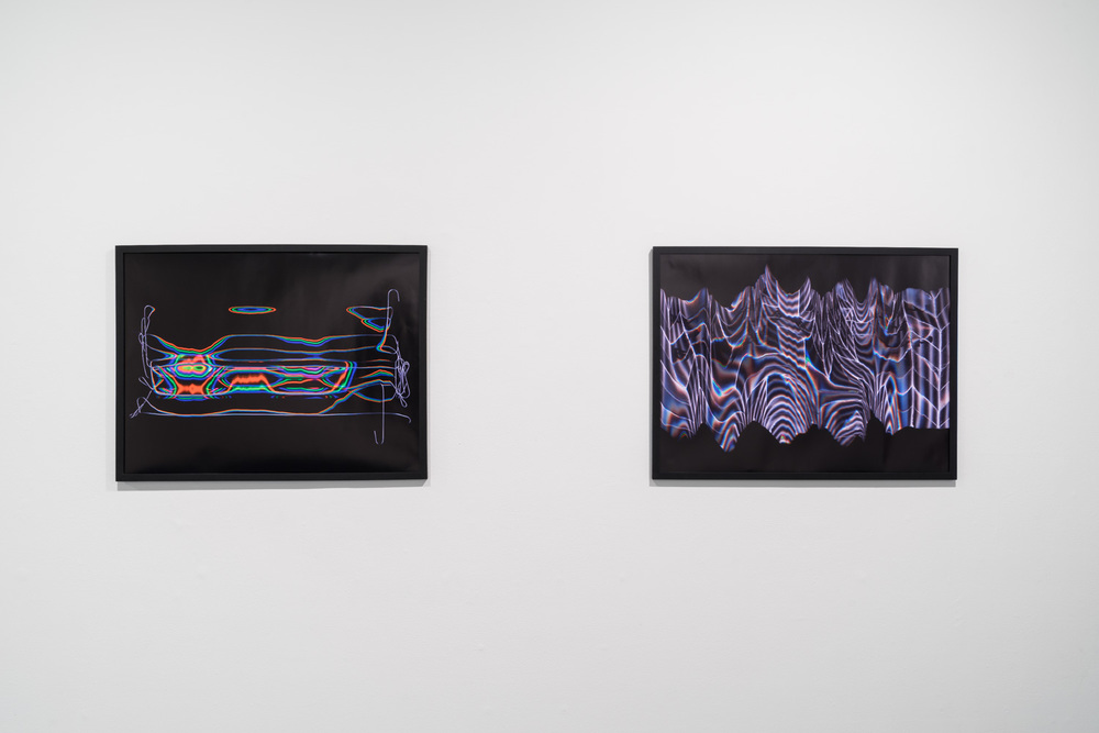 'Untitled' and 'Kingdom', part of NYSOM at Rush Arts Gallery, NYC. Photo credit: Kris Graves