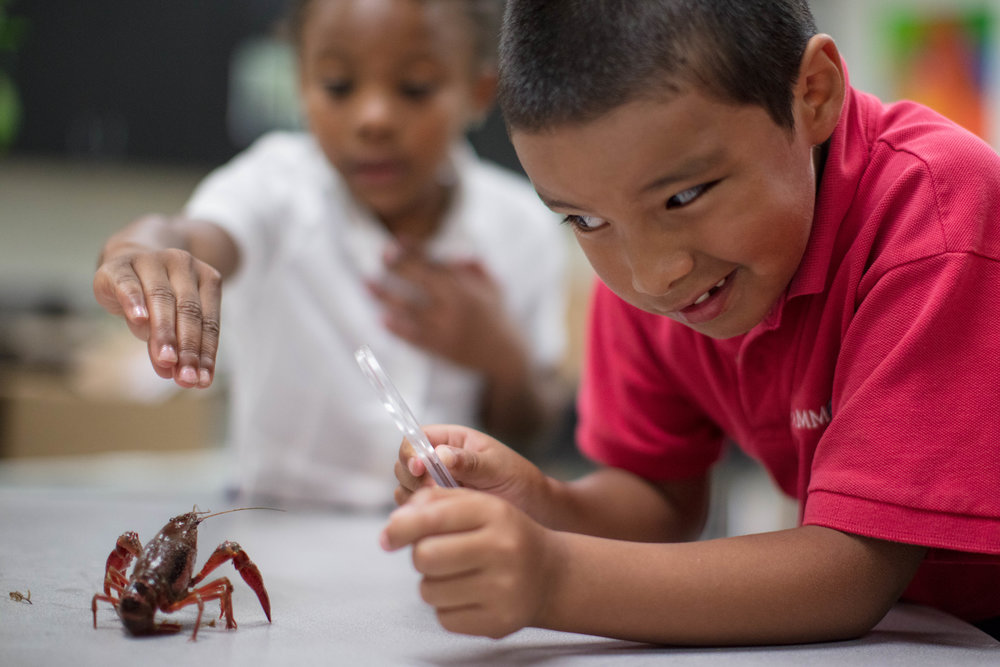 student using magnifying glass with crawfish