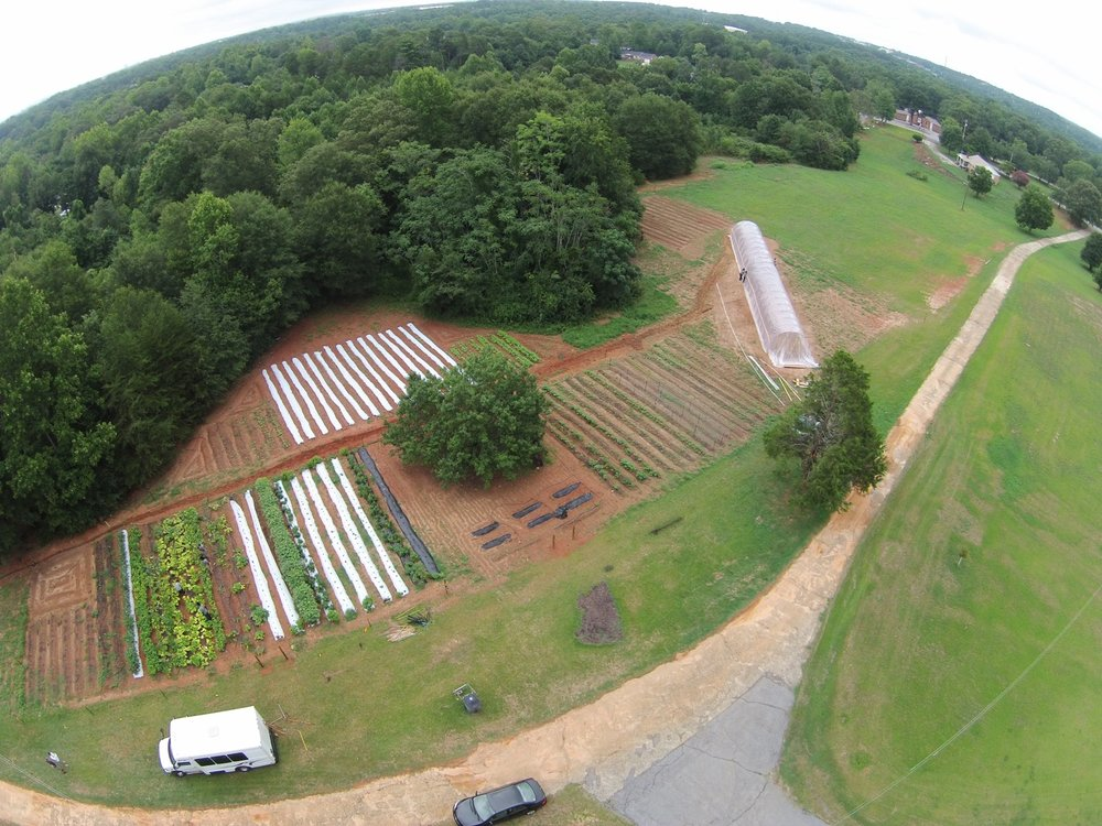 Minnie Farm is located in the Staunton Bridge Community off White Horse Road of Greenville, South Carolina. Found right off the Staunton Bridge Road at 8 Boling Road. This farm was built in May of 2016 with the help of many neighborhood partners. It is our largest farm to date.