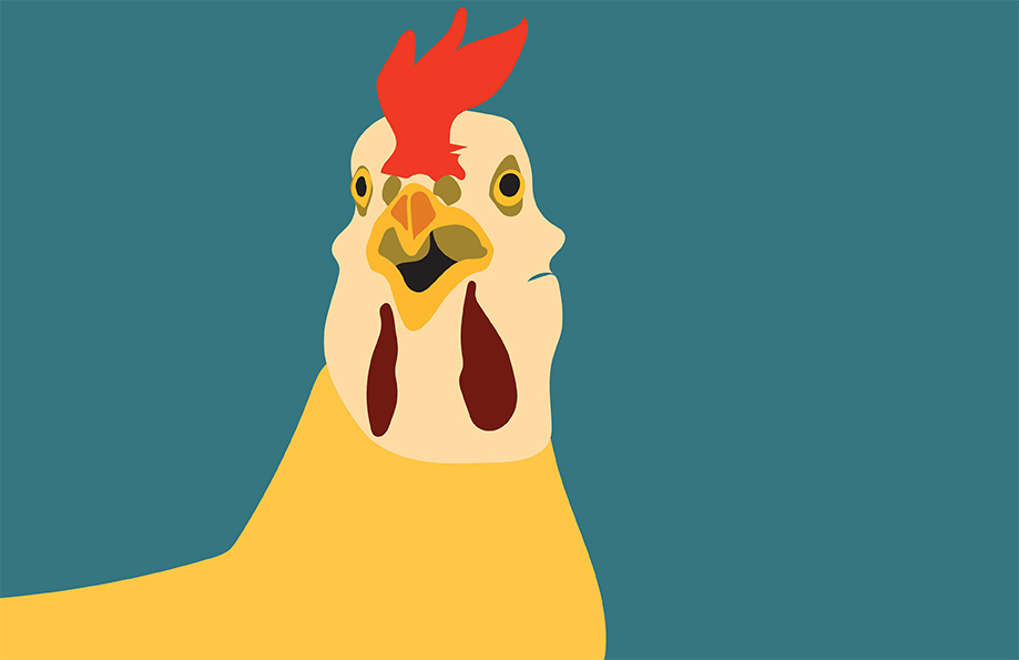 Surprised-Chicken.jpg