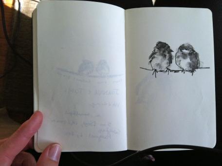 bird sketch.jpg