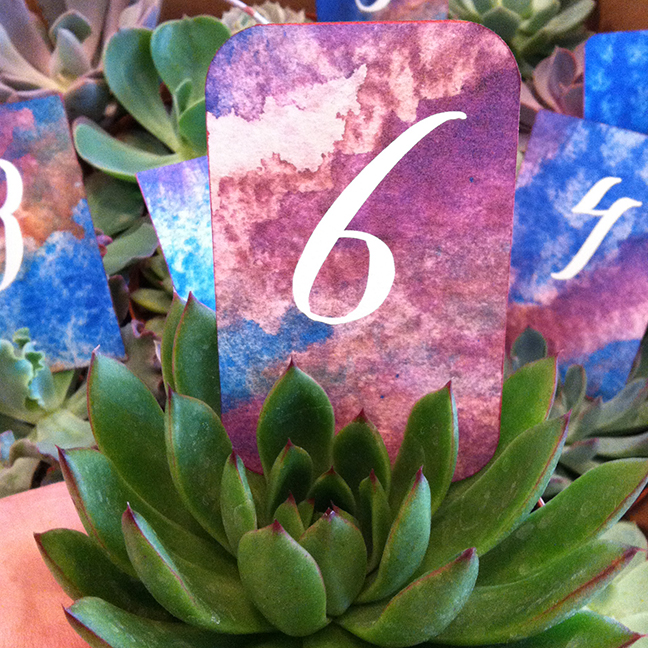 Table numbers with succulents