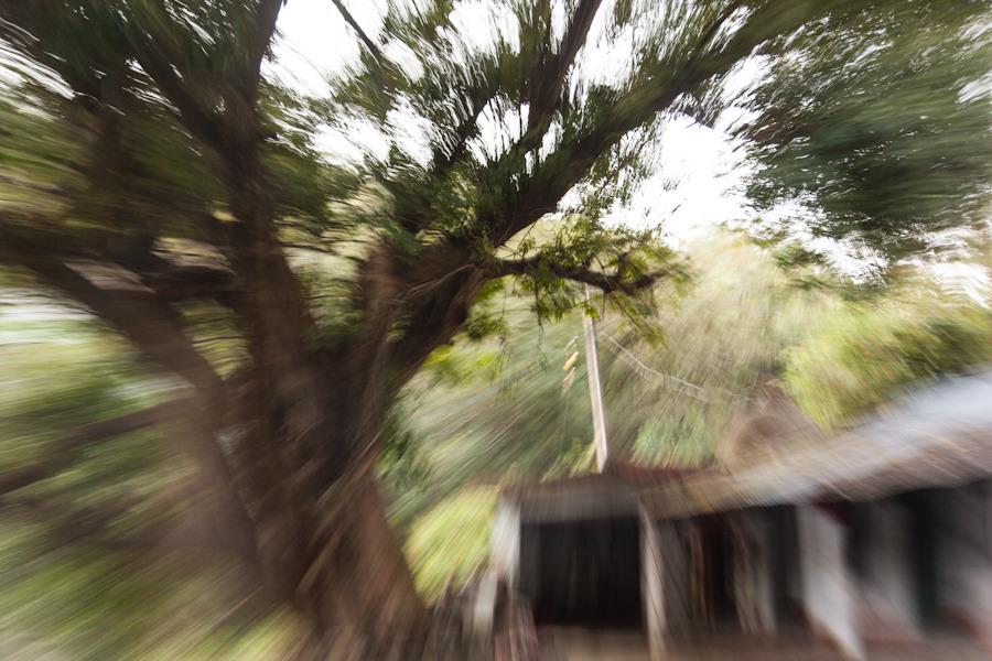 20111020_himachal_0170.jpg