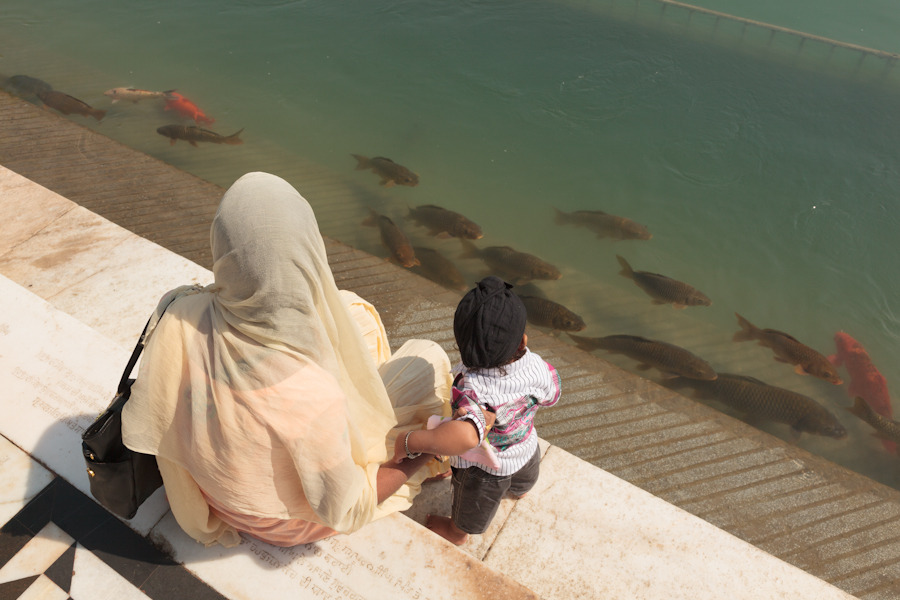 20111019_amritsar_0752.jpg