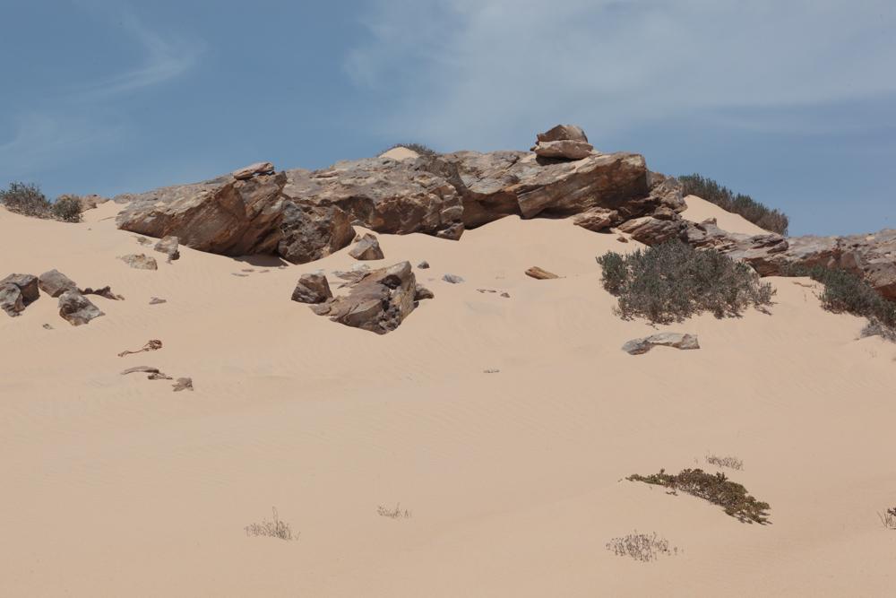 20120424_western_sahara_02166.jpg