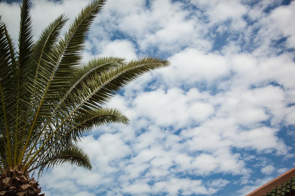 20120427_morocco_03370.jpg