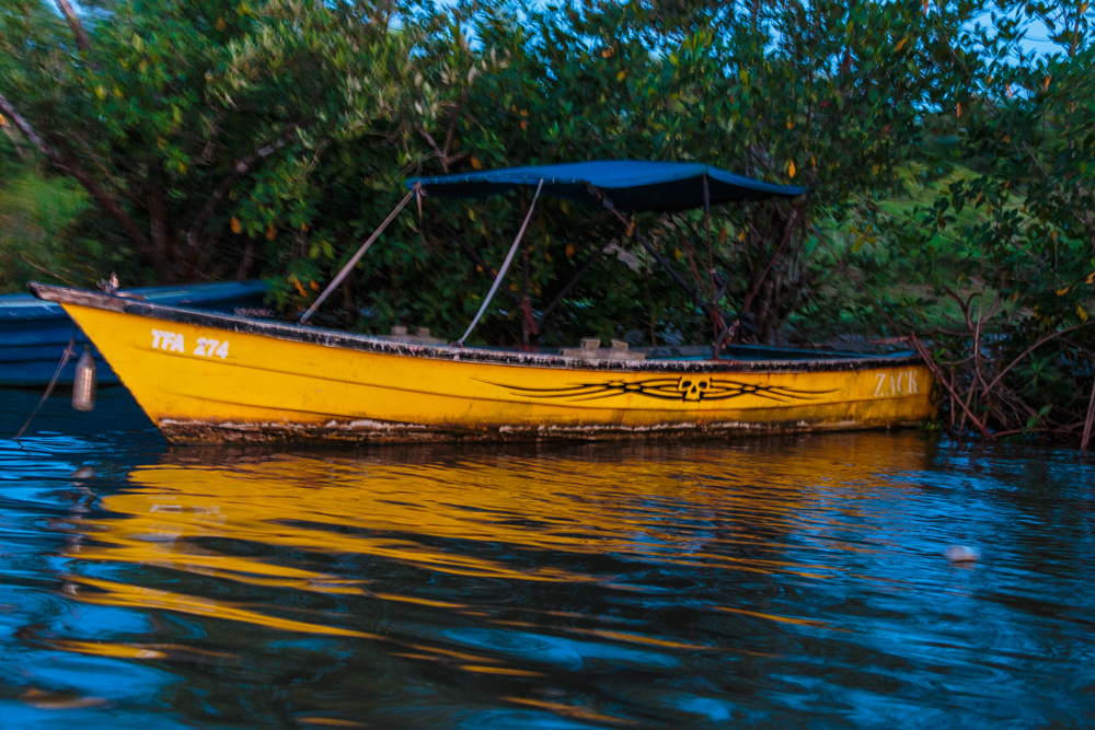 20130919_trinidad_01879.jpg