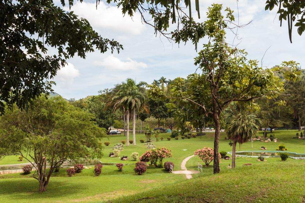 20130920_trinidad_02177.jpg