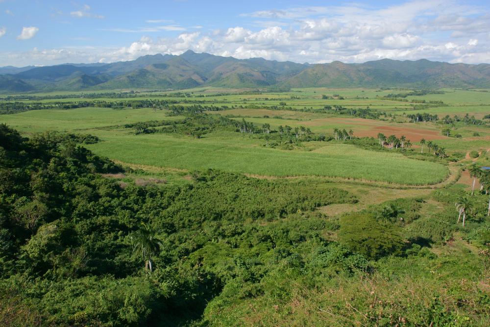 20031207_trinidad-havana_0199.jpg