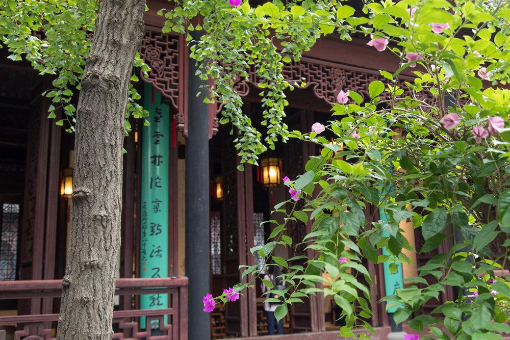 20160928_china_07144.jpg