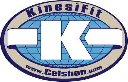 kinesfit4.jpg