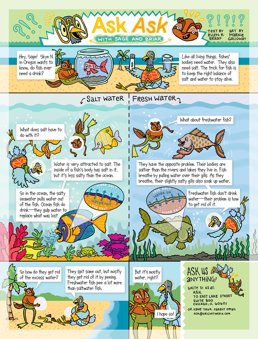 ASK ASK - Every issue of ASK magazine, a science magazine for children ages 6-9, science writer Ellen Braaf and I collaborate on a comic answering readers' science questions.
