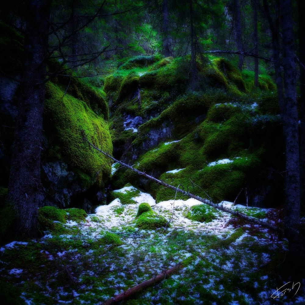 Green silence