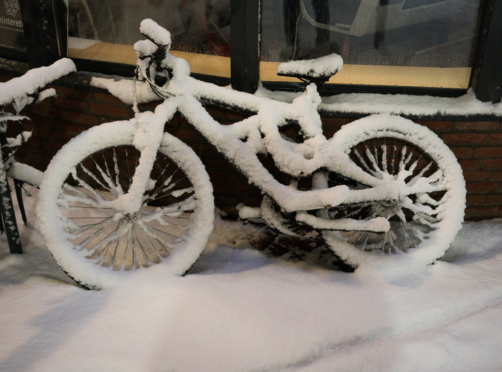 Snow Mountain Bike
