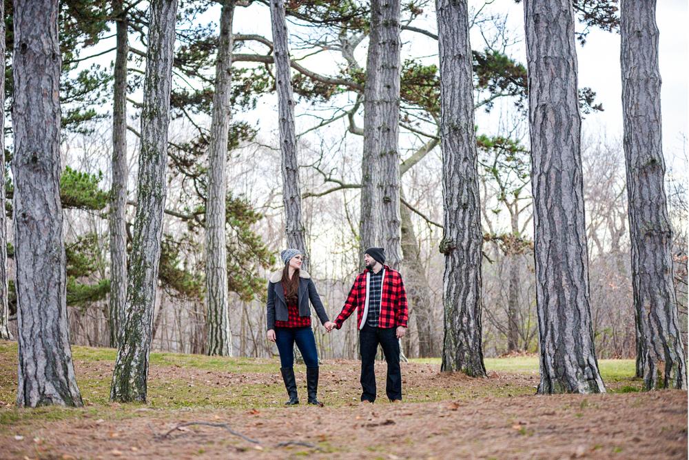 Winter, trees, high park, Canada