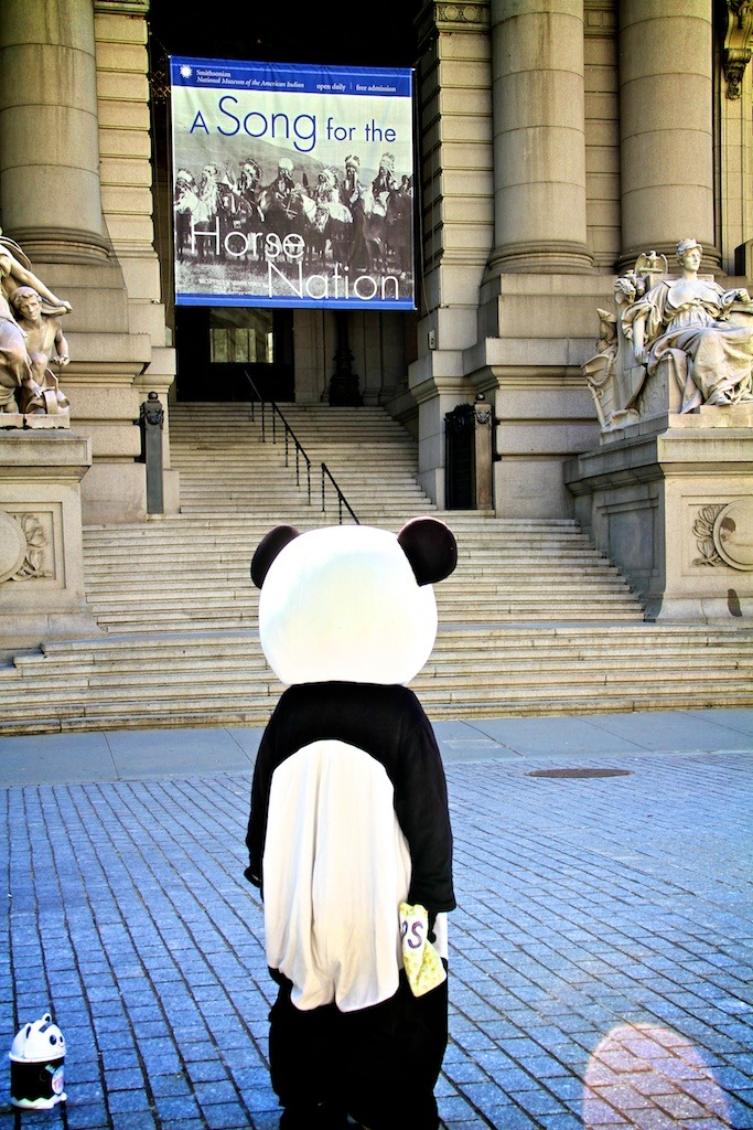 forlorn panda.jpg