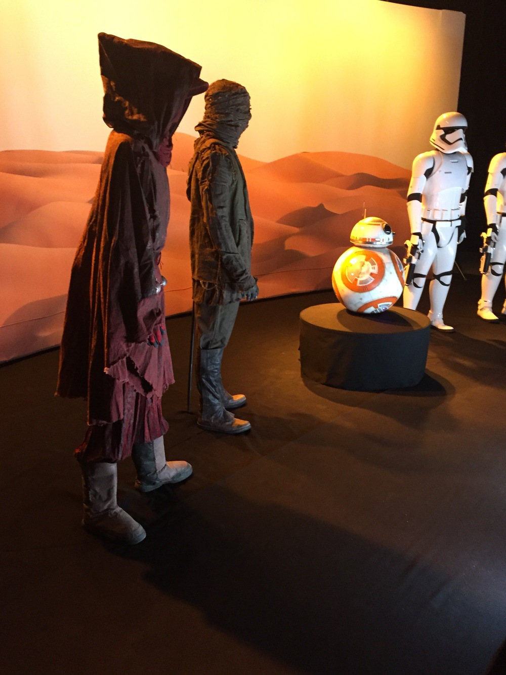 Force Awakens Exhibit  - 109.jpg