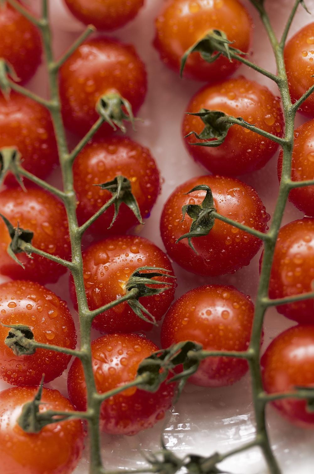 cherrytomatos.jpg