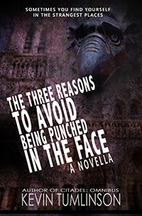 The Three Reasons to Avoid Being Punched in the Face - A NOVELLA