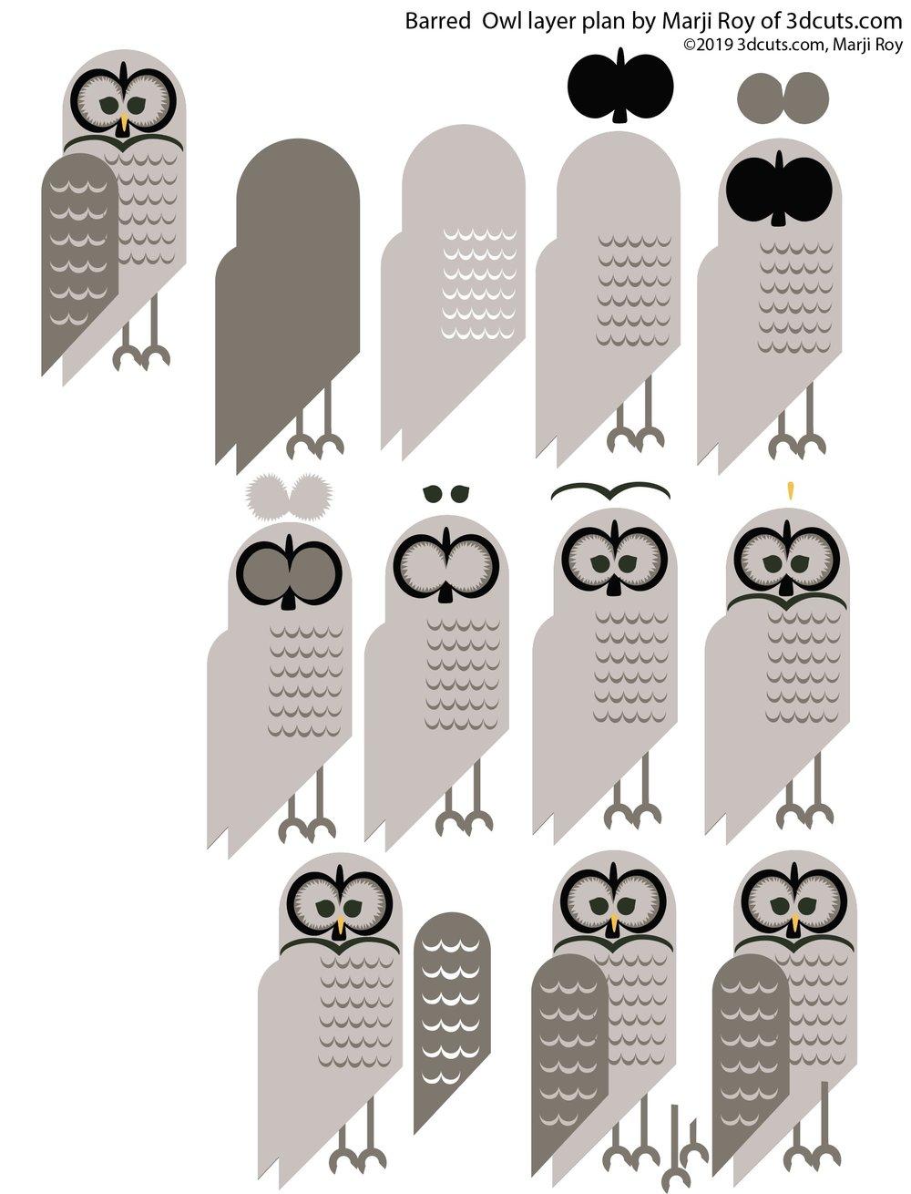 Barred owl constrcution 2.jpg