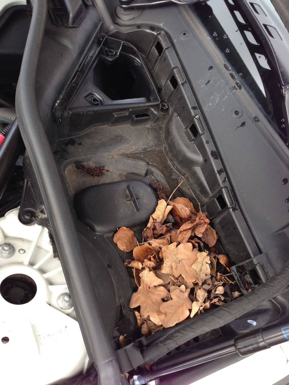 What's this? Autumn leaves in the cabin filter housing on a car serviced in June? Hmm...