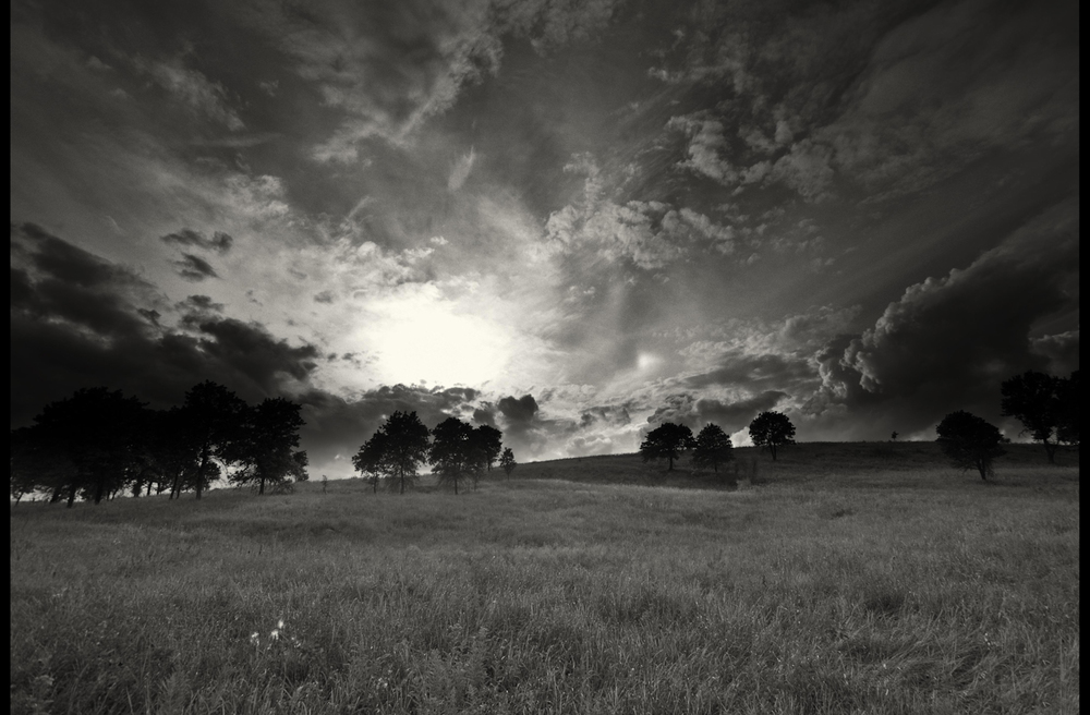 tallgrass-20.jpg